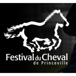 Subvention de 15 000 $ au Festival du cheval de Princeville