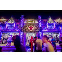 Tomorrowland a atteint 175 millions de personnes via les médias sociaux