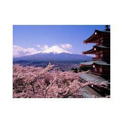 Nombre record de visiteurs étrangers au Japon