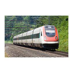 Un serpent bloque les 450 passagers d'un train en Suisse