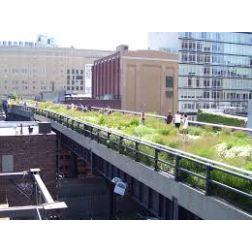 La High Line de New York fête les cinq ans d'un «projet magique»