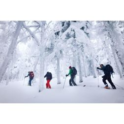 Ski Eldorado Estrie veut développer le ski en poudreuse