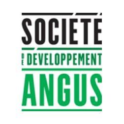 Lancement du projet Carré Saint-Laurent