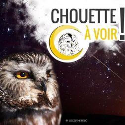 Montérégie 500 000$ - Le Canada accorde cet investissement à l'Union québécoise de réhabilitation des oiseaux de proie