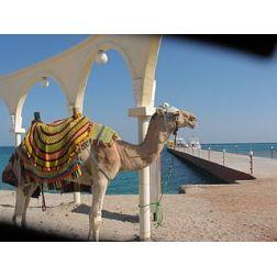 Le terrorisme, «cancer» du tourisme méditerranéen