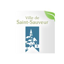 Saint-Sauveur reçoit un trophée Google eVille 2013
