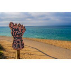 Chaire de tourisme Transat: Analyse - Célébrer le voyage… de façon responsable