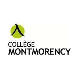 Collège Montmorency : les étudiants en recherche de stages
