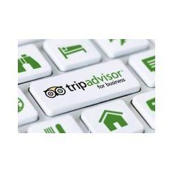 Lancement de TripAdvisor Insight