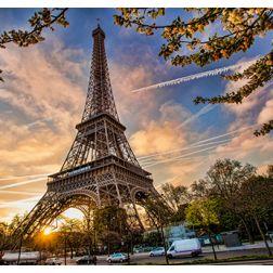 Restaurants insolites à Paris : les plus branchés