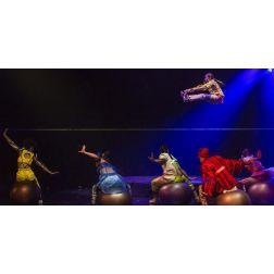 Cirque du Soleil: «La diversité est une assise de notre culture d'entreprise»