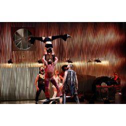Le gouvernement du Québec appuie la Cité des arts du cirque et le festival MONTRÉAL COMPLÈTEMENT CiRQUE