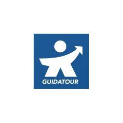 Abolition du permis de guide touristique à Québec: nous réclamons un moratoire