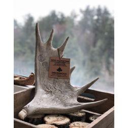 Tourisme Autochtone Québec remporte un prix «Meilleure campagne marketing»
