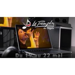 30 000$ au festival Le Tremplin de Dégelis