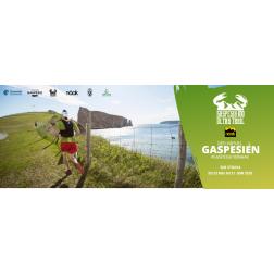 Une version virtuelle de l'Ultra Trail Gaspesia 100 pour promouvoir la Gaspésie