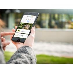 T.O.M.: GEED, la solution digitale qui valorise les sites touristiques et culturels