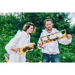 Production de miel forestier au Massif de Charlevoix