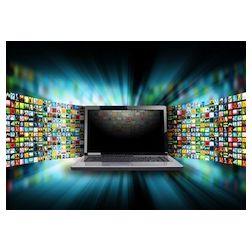Tendances 2013 en radiodiffusion : la télévision traditionnelle en baisse