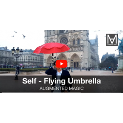 T.O.M.: Un parapluie autonome pour se balader dans Paris