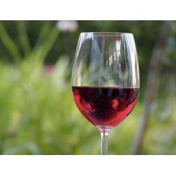 Promotion et valorisation des produits bioalimentaires d'ici - Le ministre André Lamontagne annonce La Nouvelle indication géographique protégée «Vin du Québec»