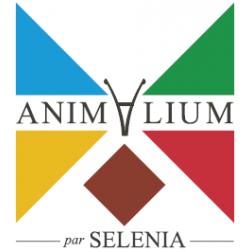 Nouveau musée zoologique: L'Animalium de Mont-Tremblant