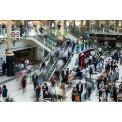 T.O.M.: Ecommerce : Google Images intégrera bientôt de la publicité