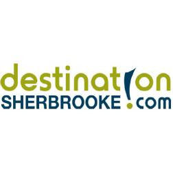 Animation des murales à Sherbrooke pour l'été 2017