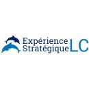 Conseiller(ère) analyste en marketing et management