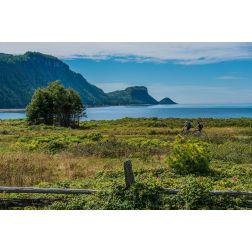 Un portrait positif de ce début de saison touristique dans le Bas-Saint-Laurent