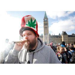 L'industrie touristique divisée sur la plus-value du cannabis