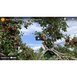 La région de l'érable lance une vidéo identitaire touristique et culturelle